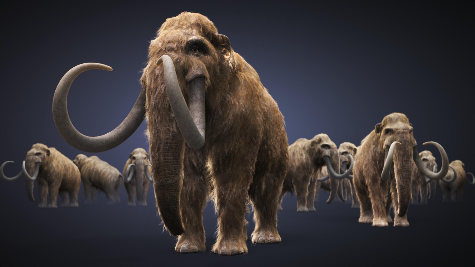 От глобального потепления спасут... мамонты...