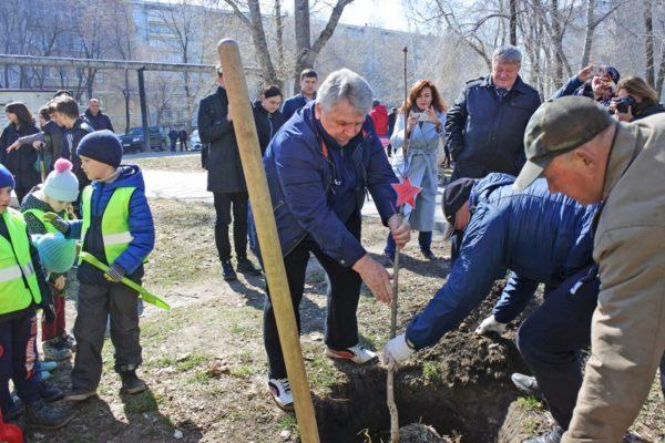 Власти Ульяновска озеленят город