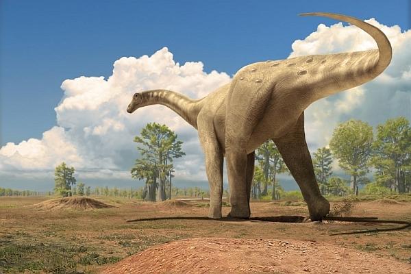Ученые нашли ногу самого большого динозавра на Земле