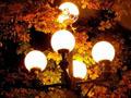 Все современные уличные фонари являются источниками светового загрязнения окружающей среды