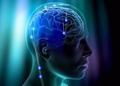 Десять сверхспособностей, которые получат люди с мозговыми имплантатами