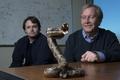 Ученые создали универсальный антидот от змеиных ядов