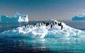 Ученые: глобальное потепление губительно и необратимо