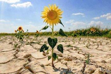 Люди из бедных слоев населения меньше всех могут адаптироваться к изменению климата
